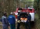 Požár lesa Štěnovice